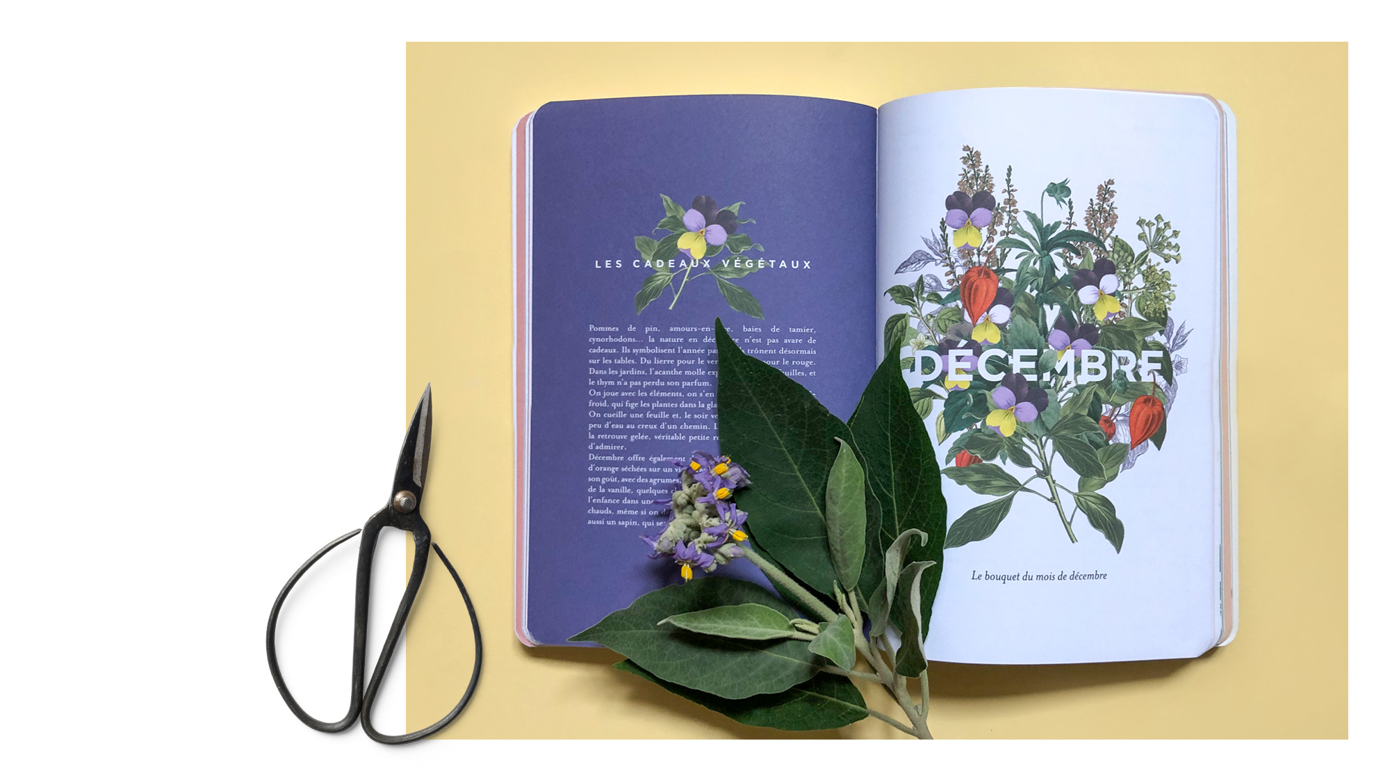 trc_agenda-herbier_decembre_printed