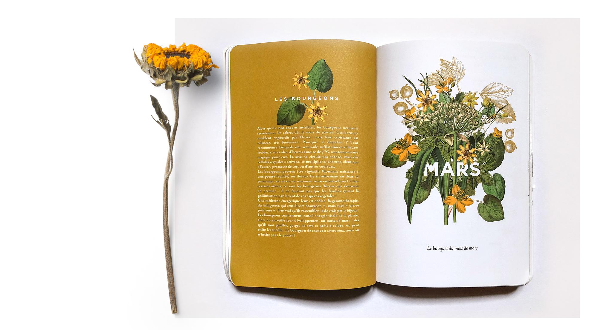 trc_agenda-herbier_mars_printed
