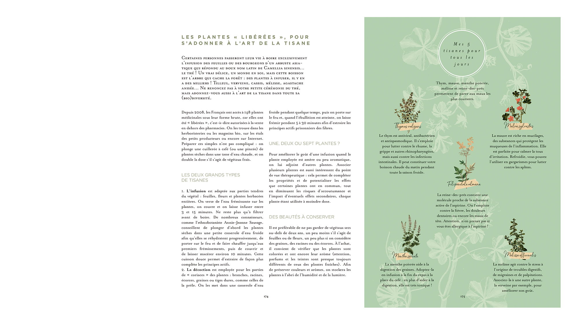 trc_agenda-herbier_plantes_stil